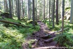Wanderung durch den Tiveden-Nationalpark