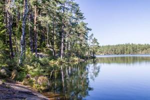 Schweden 2015 – Durch den Tiveden-Nationalpark