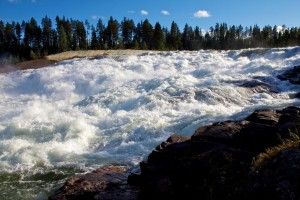 Storforsen – die größten Stromschnellen Nordeuropas