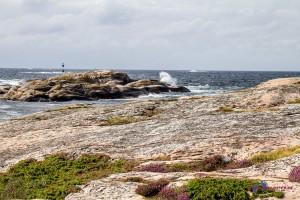 Schweden 2015 – Tjurpannan Naturreservat